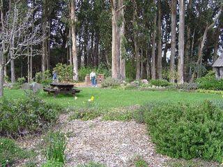Mendocino-coast-botanical